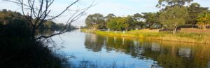 FREE! PaddleHub Geelong 22nd April @ Geelong Canoe Club | Newtown | Victoria | Australia
